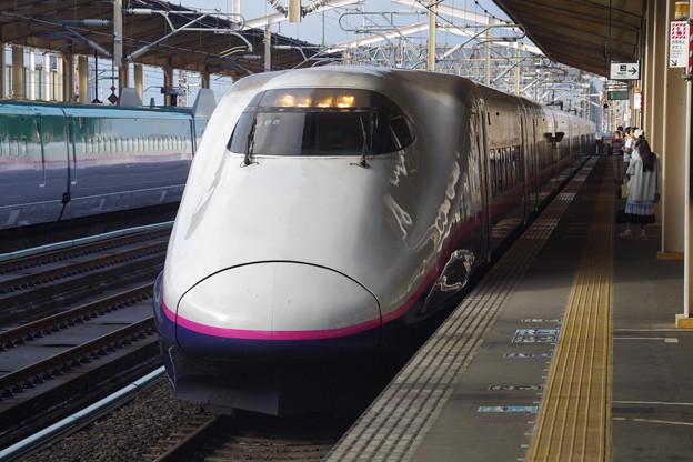 E2系J66編成 (9)