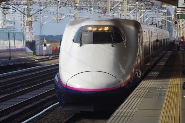 E2系J66編成 (6)