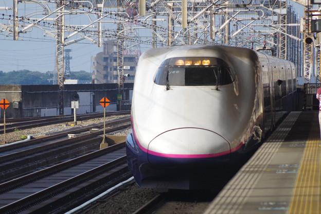 E2系J66編成 (5)