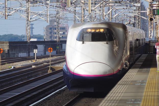 E2系J66編成 (4)
