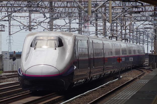 E2系J61編成 (5)