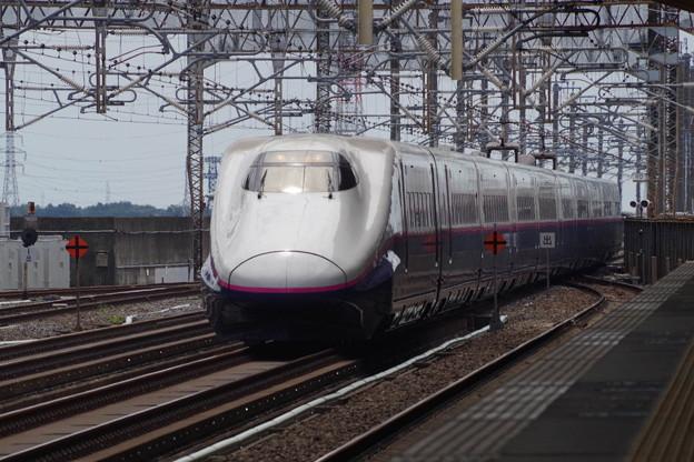 E2系J61編成 (2)