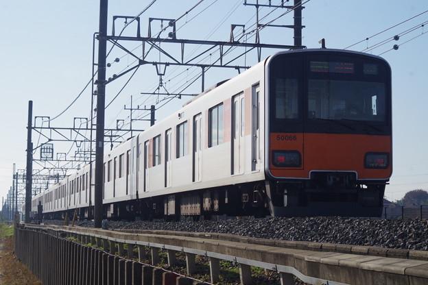 50050系51066編成 (7)