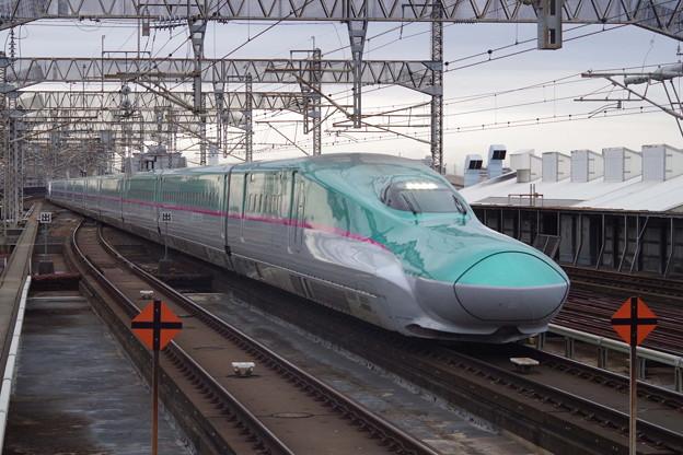 E5系U21編成 +E6系Z21編成 (6)