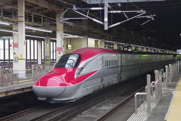 E5系U21編成 +E6系Z21編成 (17)