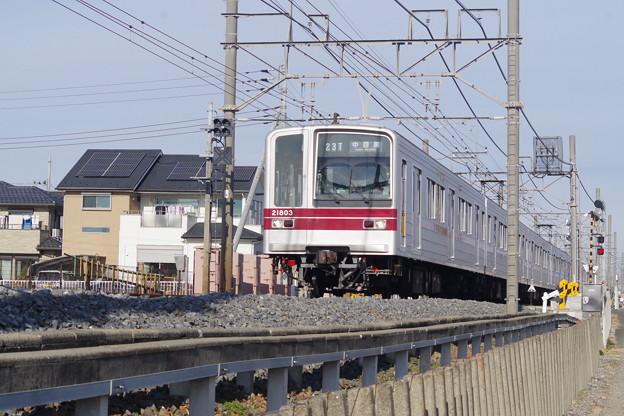 IMGP1349