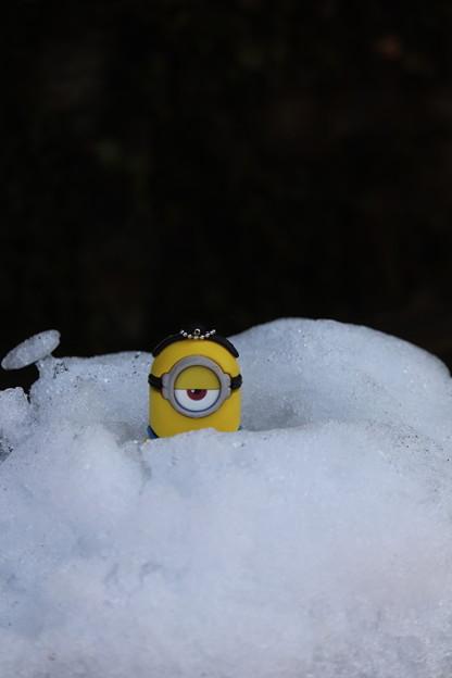 Photos: 冷たい。。。