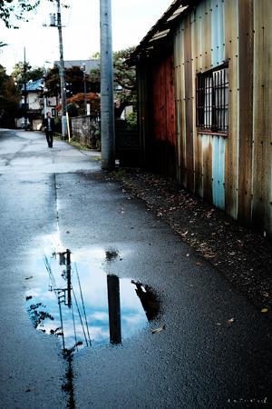 雨上がり-2821