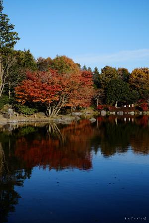 昭和記念公園-3784._庭園jpg