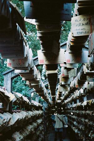 氷川神社_絵馬トンネル_Rollei35_lomography100-020020