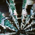 Photos: 氷川神社_絵馬トンネル_Rollei35_lomography100-020020