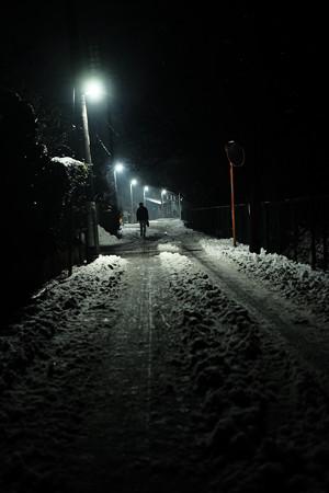 雪_夜道-5469