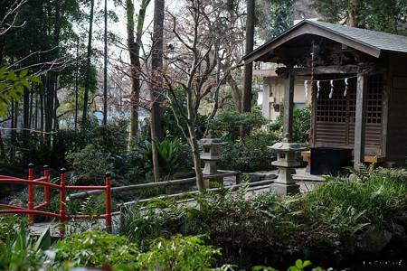 お鷹の道_真姿の池-01517