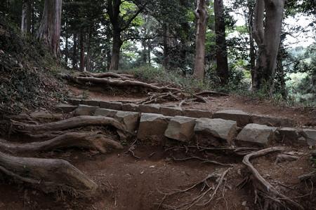 X70_-八王子城_06_金子丸への道-0554