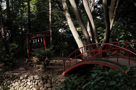 X70_川越_慈眼堂下の厳島神社-0876