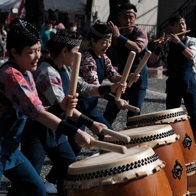 桜祭り-7467