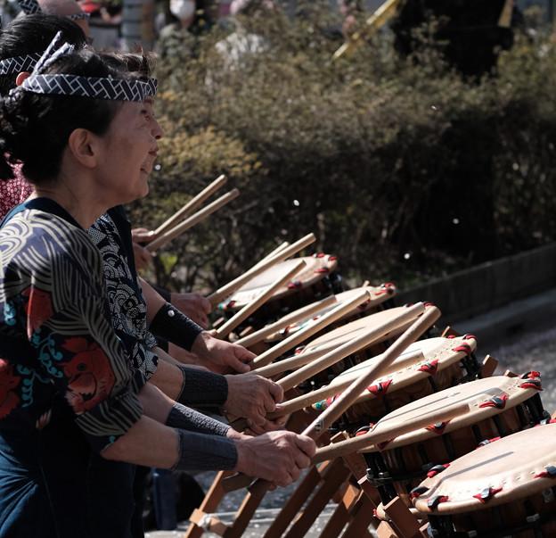 桜祭り-7469