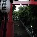 写真: 愛宕神社_鳥居-4130