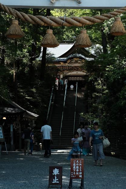 宝登山神社-7865