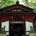 写真: 宝玉稲荷神社-7876