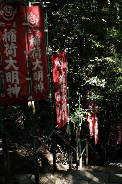 宝玉稲荷神社-7877