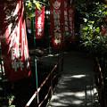写真: 宝玉稲荷神社-7879