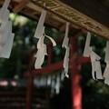 写真: 上之台稲荷神社_手水舎-7918
