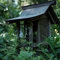 写真: 上之台稲荷神社_祠-7916
