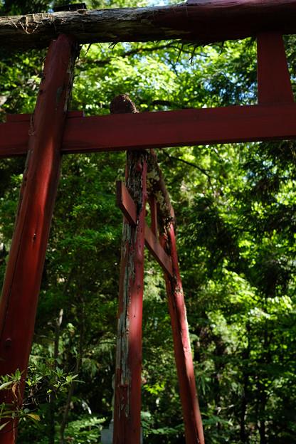 上之台稲荷神社-7906