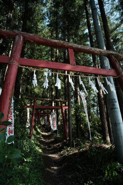 上之台稲荷神社-7933