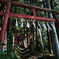 写真: 上之台稲荷神社-7933