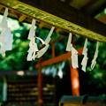 Photos: minoltacl_上之台稲荷神社_手水舎-000033