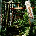 写真: minoltacl_上之台稲荷神社-000034