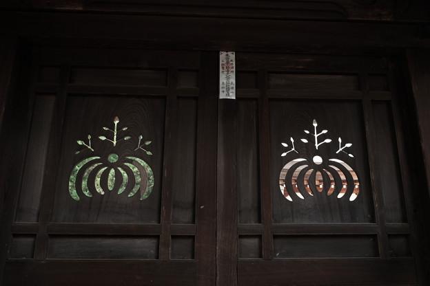 恵林寺_五三桐-4210