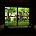 写真: 恵林寺_新緑-4215