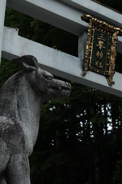 三峰神社_狼-8180