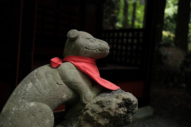 三峰神社_狼-8205