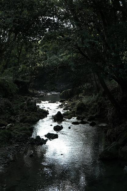 鉢形城_11深沢川-8443