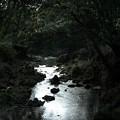 Photos: 鉢形城_11深沢川-8443
