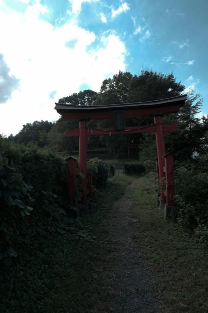 鉢形城_稲荷-8446