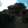 写真: 鉢形城_稲荷-8446