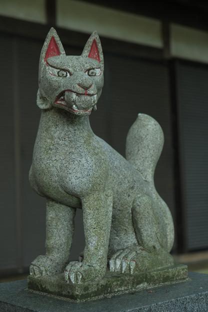 鉢形城_稲荷-8478