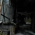 Photos: 奥多摩工場-8523