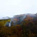 写真: 八ヶ岳高原大橋-4465