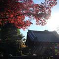 写真: 小川寺_紅葉-4483