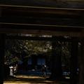 Photos: 広徳寺_黄葉-8663