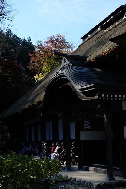 広徳寺-8680