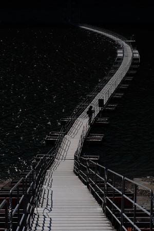 龍-8771