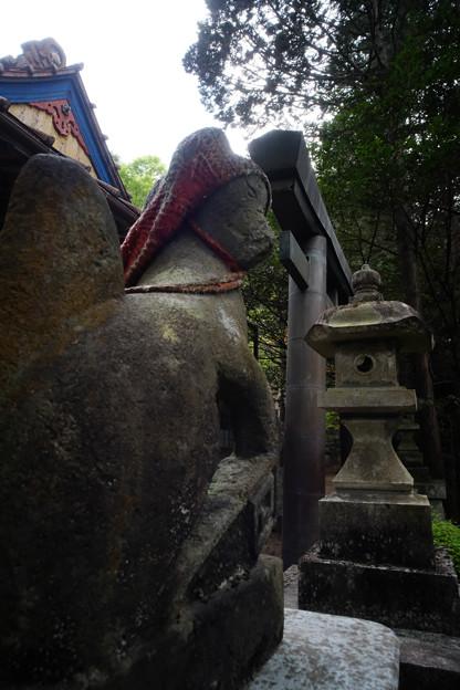 朝日稲荷神社_17狐-9202