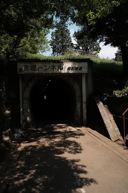 トンネル_04赤堀トンネル-9257
